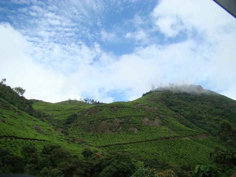 Pothamedu View Point