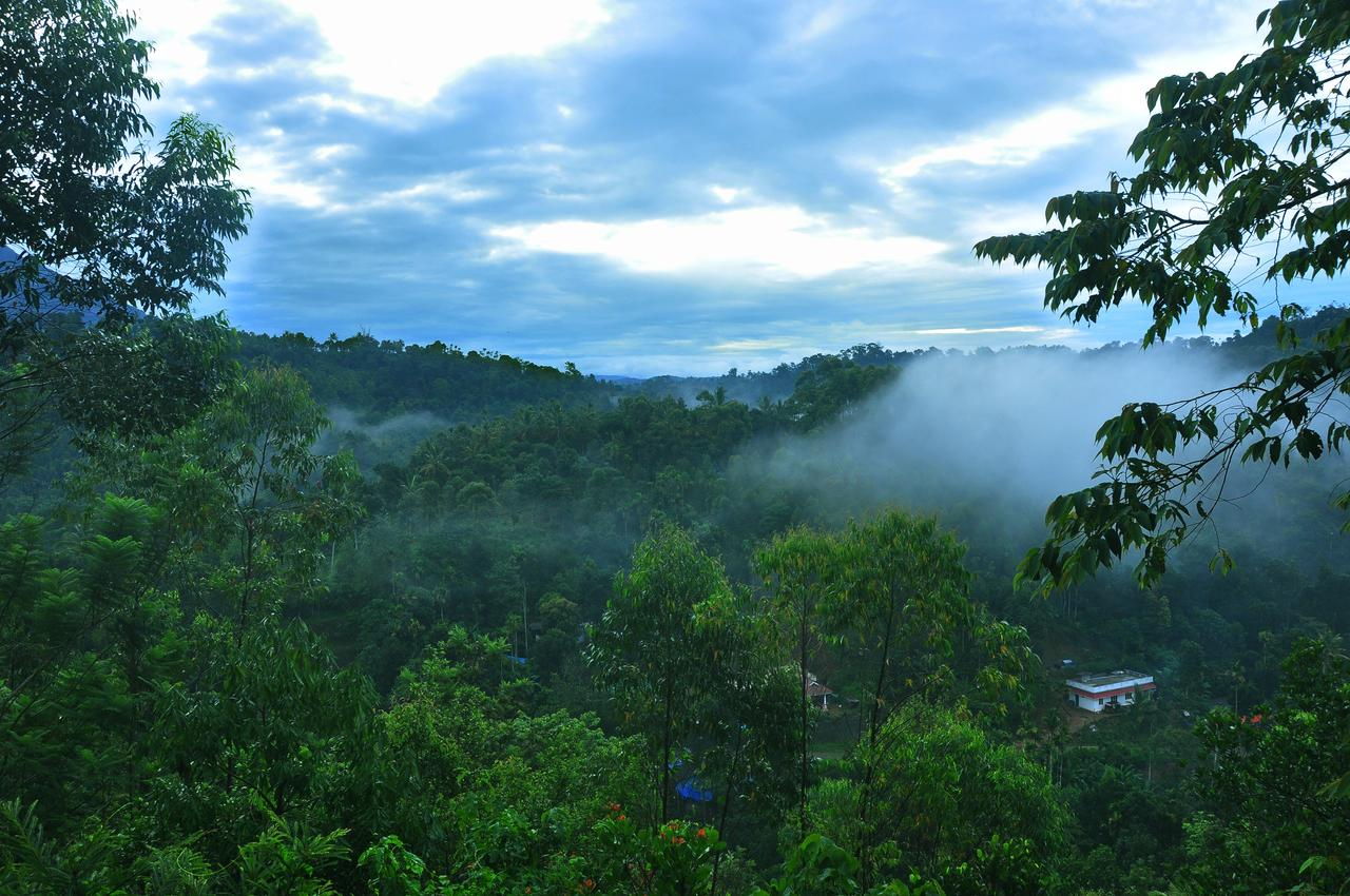 Munnar Honeymoon Tourist Places- Romantic Places in Munnar to visit on your  Honeymoon