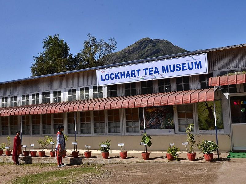 lockhart-tea-museum