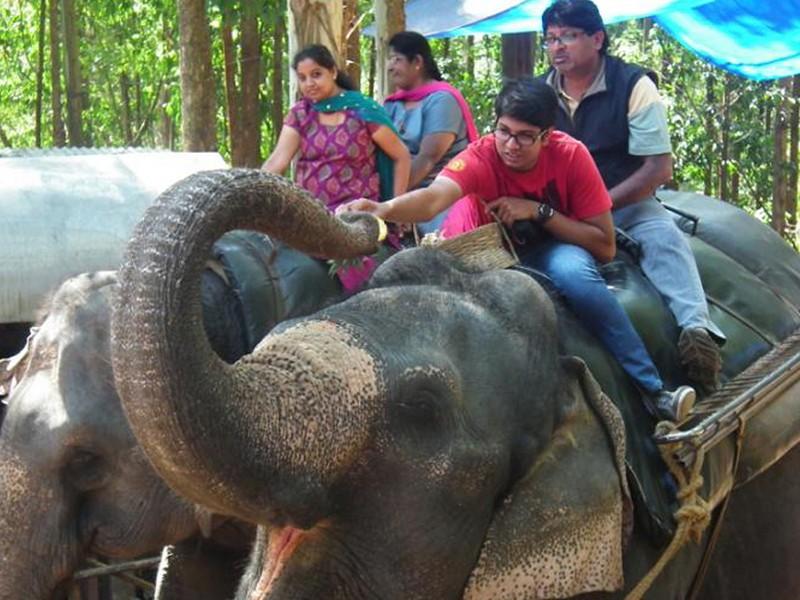 carmelagiri-elephant-park-munnar